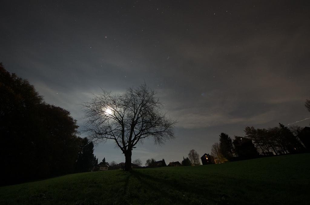 Moon light shadow ©MarkusLandsmann